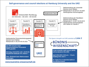 Hamburg University, University Medical Center Eppendorf and their self-governance structures